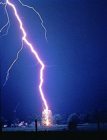 Photograph of lightning hitting a tree